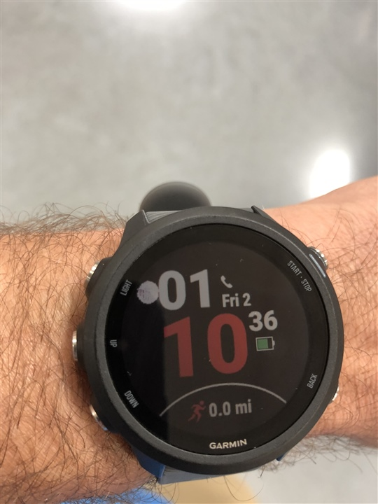 245 screen and gps issues - Forerunner 245 Series - Running